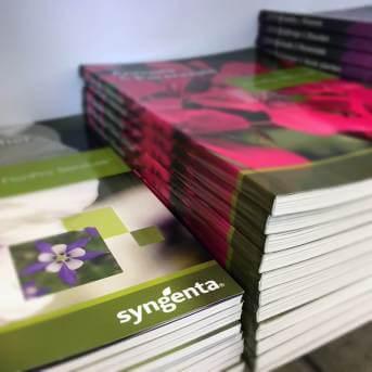 Syngenta Katalog